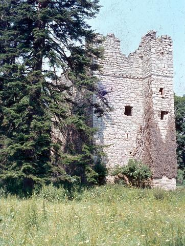 Kilgobbin castle Dublin