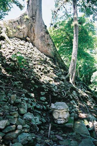 Mayan, Copan