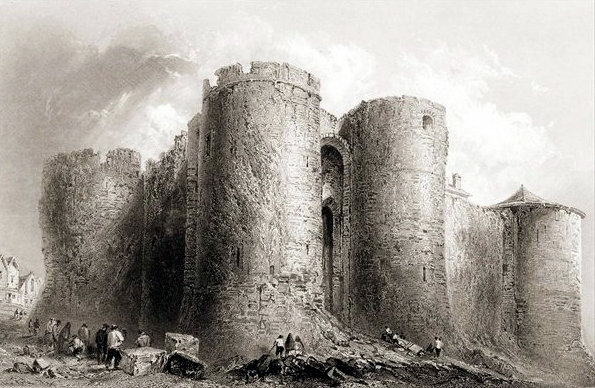 Johns Castle Limerick