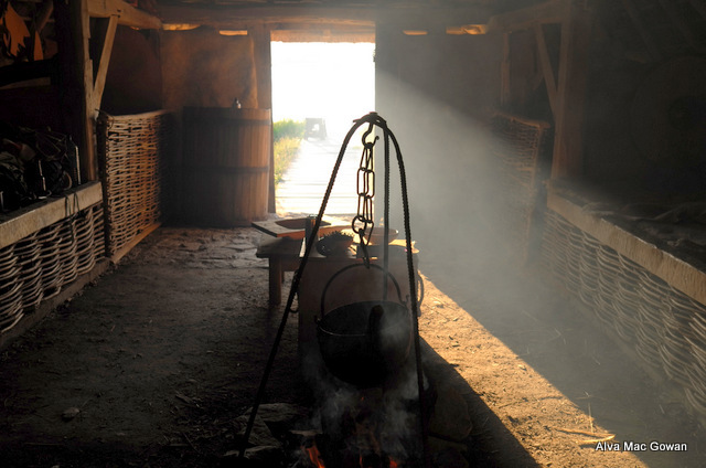 Inside Viking house
