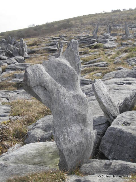 She Who Rejoices, Co. Clare