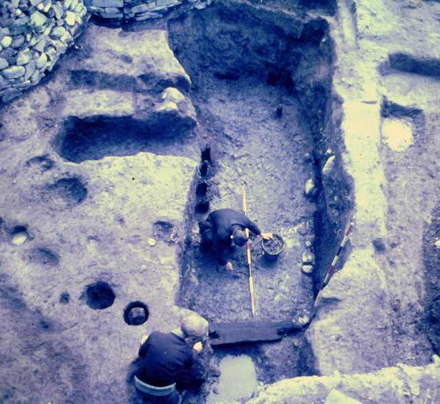 Sunken Viking house Dublin