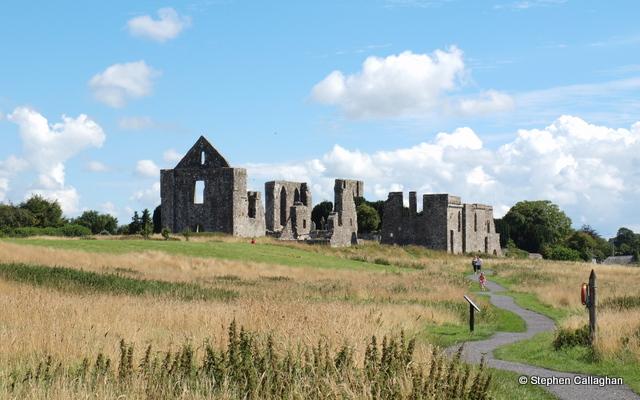Newtown Abbey, Trim Stephen Callaghan