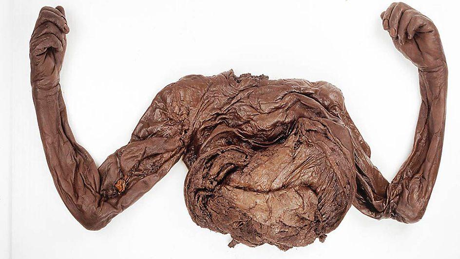 Old Croghan man bog body