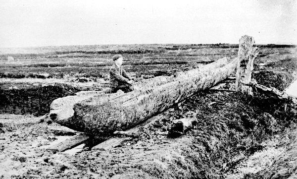 Addergoole dug-out canoe, Lurgan, Co. Galway