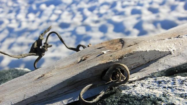 Prehistoric ice ski