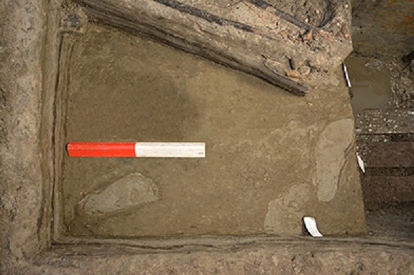 Prehistoric footprints
