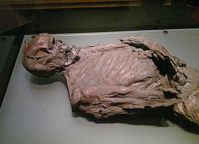 gallagh man a bog body from co galway irish archaeology
