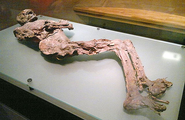 Gallagh man bog body