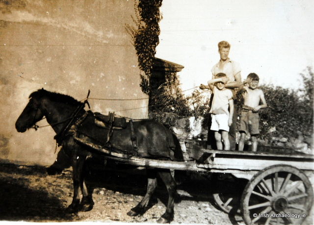 Horse and cart, Davidstown, Co. Wexford