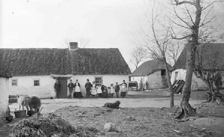 Thatched cottage kildare