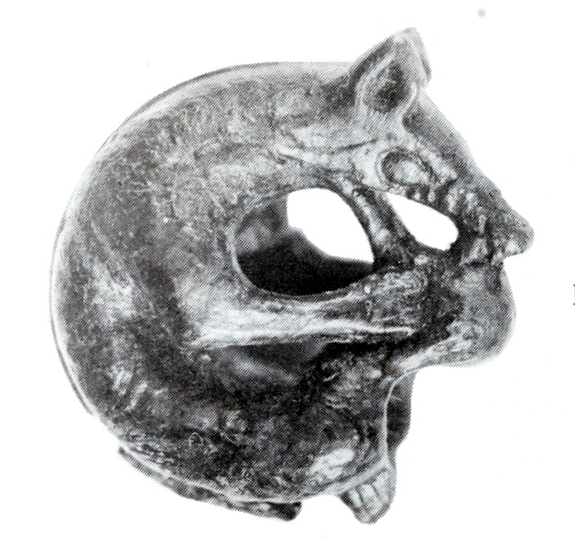 A possible depiction of the Viking wolf Fenrir from Dublin   ef31f5bcb