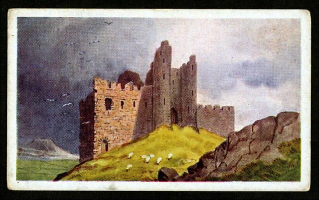 Castle roache