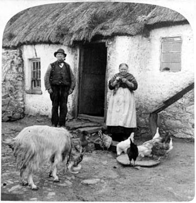 irish peasants