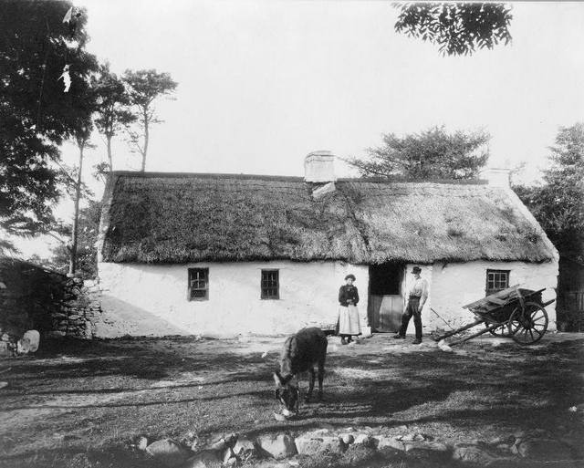 old Irish farm