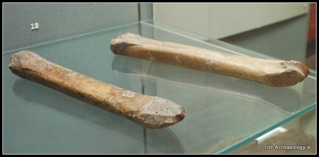 bone ice skates Viking