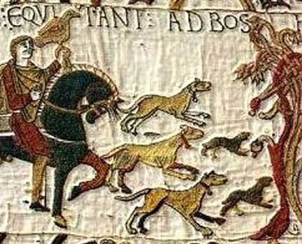 dogs-bayeux-tapestry